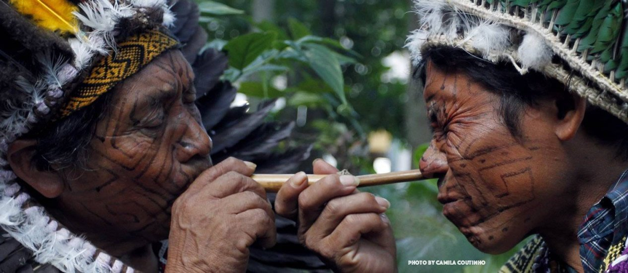 Yopo: The Ancient Amazonian DMT Snuff
