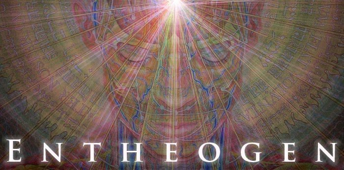 Drugs and Entheogens: What's the Difference ?