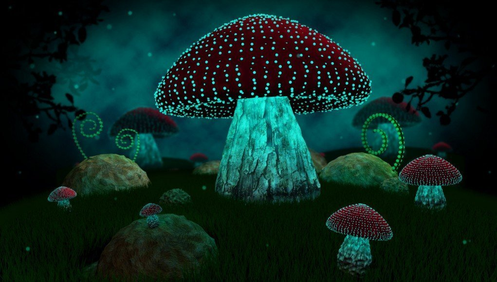 Further Proof Psychedelic Mushrooms Could Help Keep You Sane