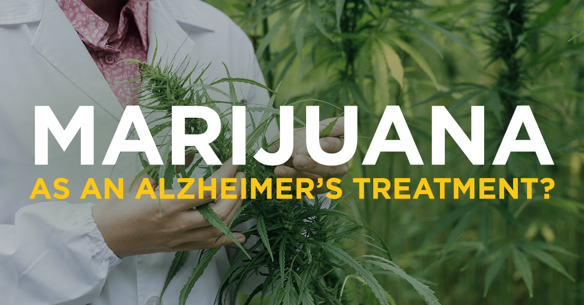 Marijuana Fights Alzheimer's Disease, New Study Indicates