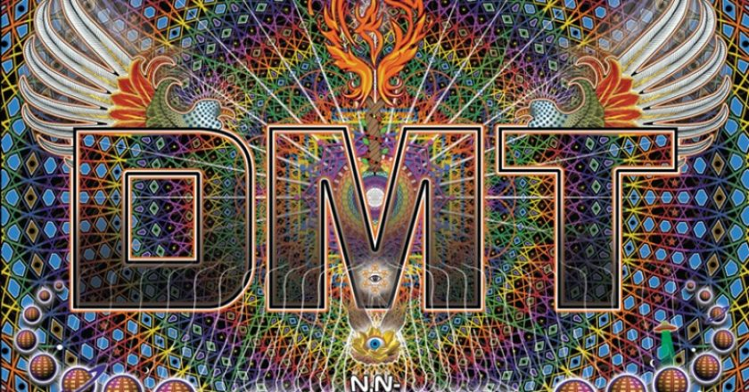 A [Not So] Brief Overview of DMT