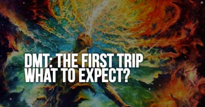 DMT: The First Trip – What to Expect?