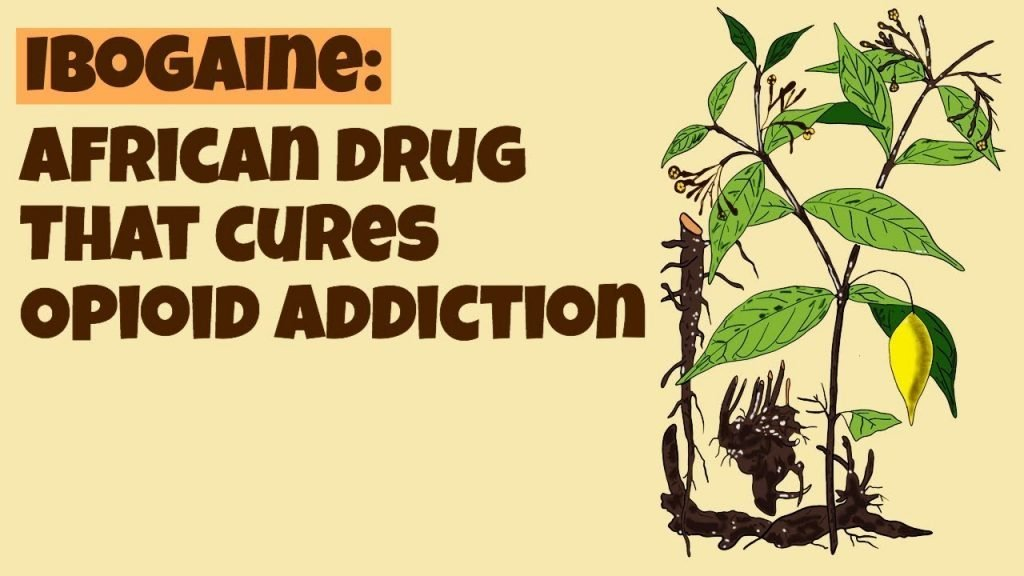 Kicking Addiction by Going from Heroin to Methadone to Ibogaine