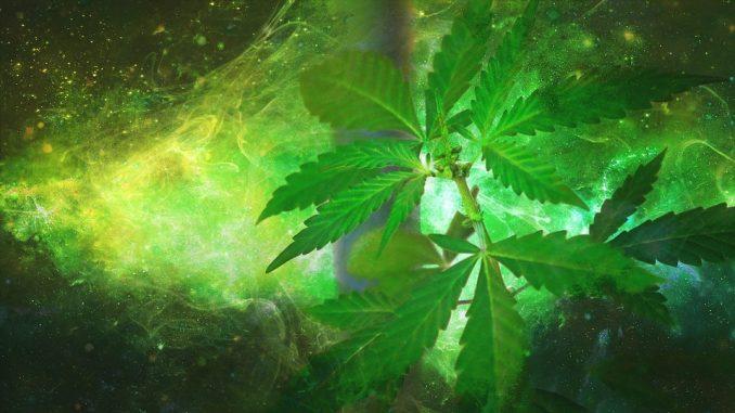 Marijuana & Spirituality: What Is The True Relationship?