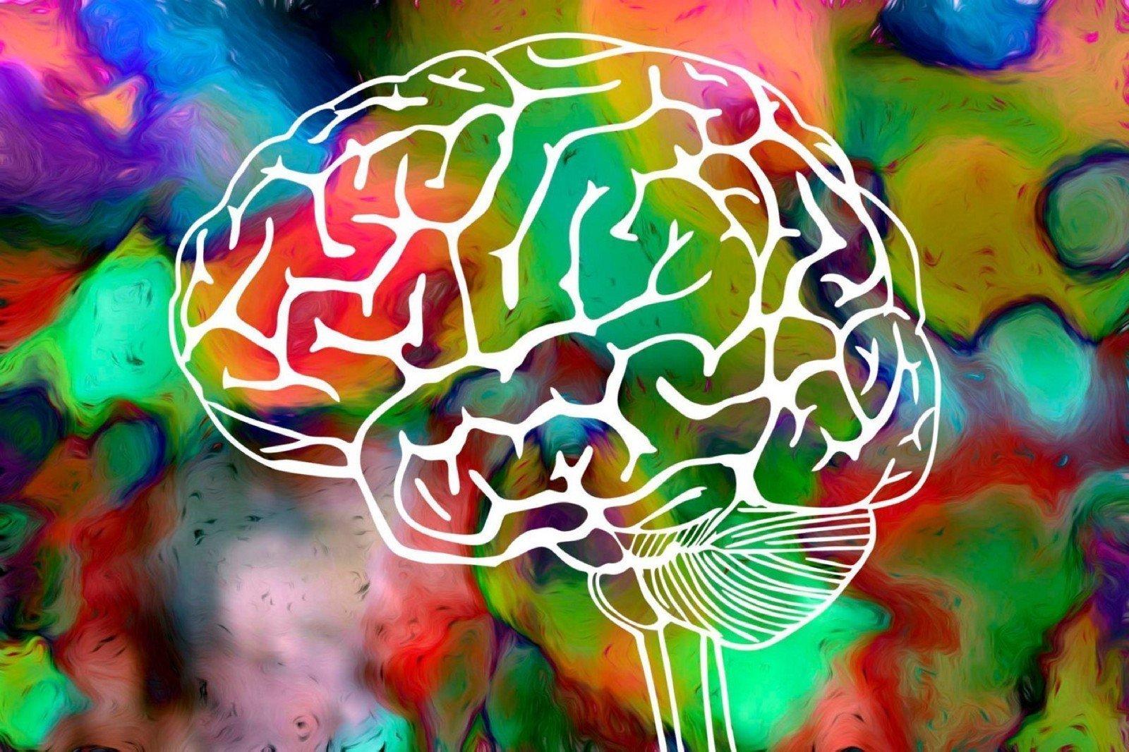 How Do Hallucinogens Work?
