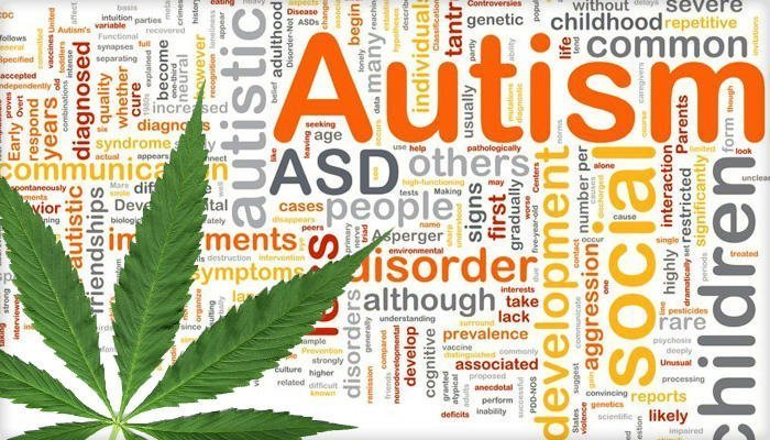 What Happened When They Treated Autistic Children With Medical Cannabis