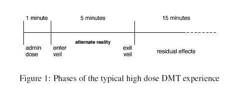 Typical DMT Phases