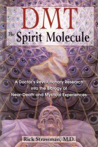 Rick Strassman - DMT Spirit Molecule