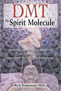 DMT: Spirit Molecule - Great Book to Start Your Journey With