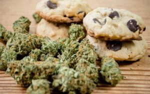 Why Does Marijuana Give You The Munchies?