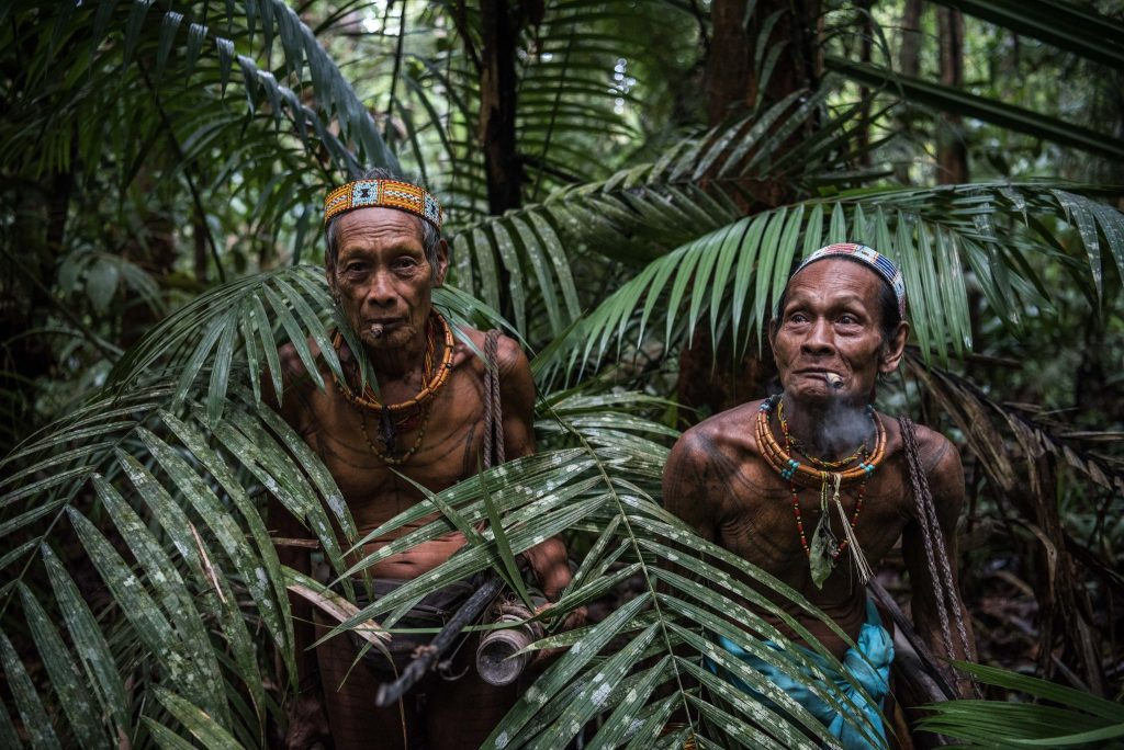 Scientists Put Shamanic Medicine Under The Microscope