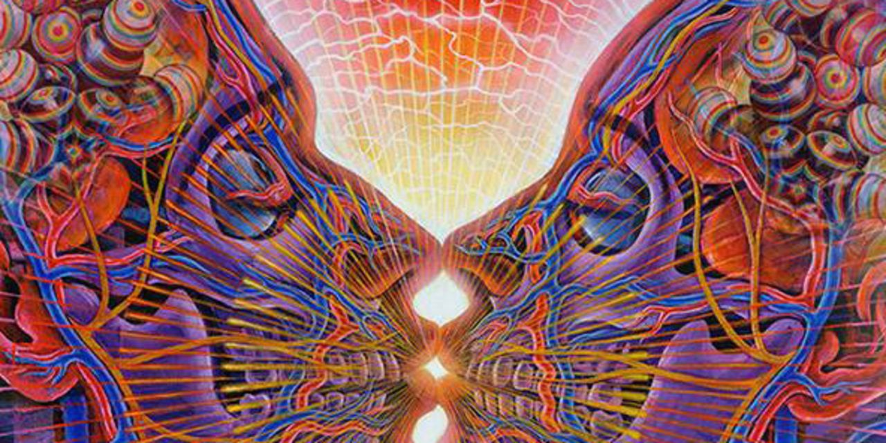 The Creative Process and Entheogens by Alex Grey