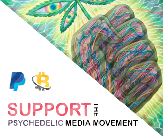 Spirit Molecule - Support Us