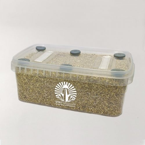 Spirit Molecule Grow Kits - Spirit Box XL