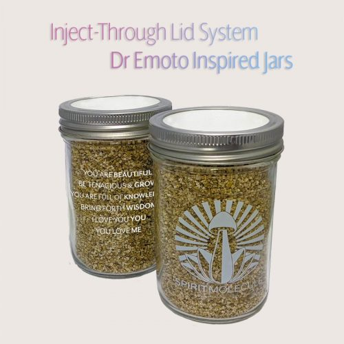 Spirit Molecule Grow Kits - Spirit Jar