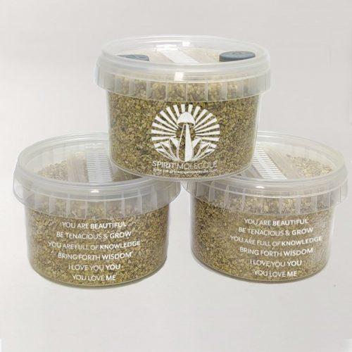 Spirit Molecule Grow Kits - Spirit Pot