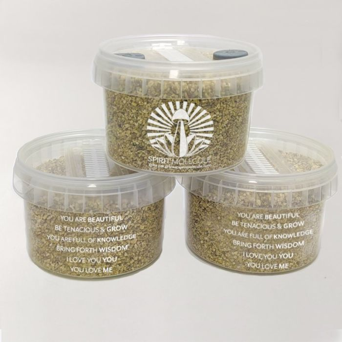 Spirit Molecule Grow Kits - Spirit Pot