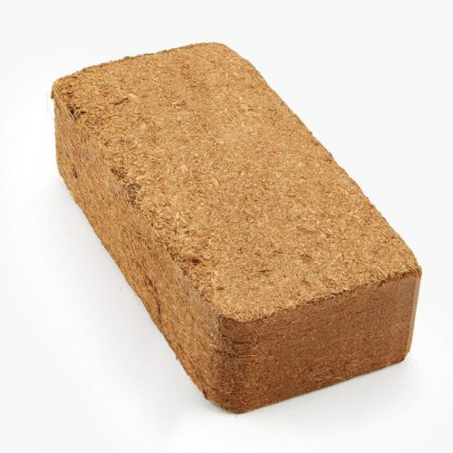 Coir Substrate Block - Spirit Molecule Mycology Store