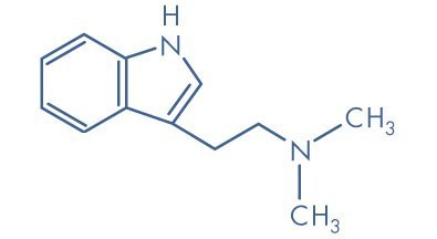 Spirit Molecule - DMT Molecule