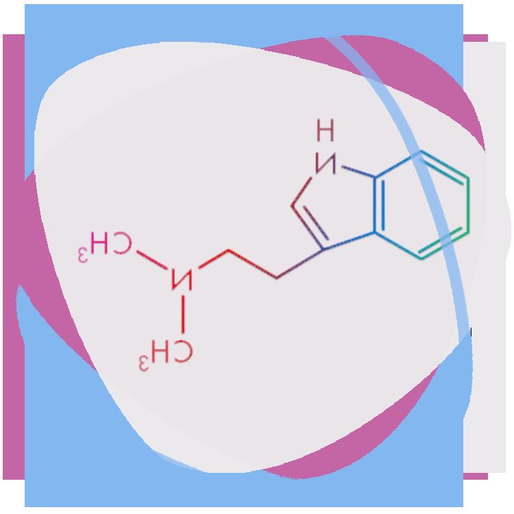 Spirit Molecule - Psychedelics (LSD)Spirit Molecule - Psychedelics (Ayahuasca)