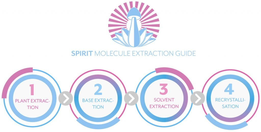 Spirit Molecule DMT Extraction Guide - 4 Steps to Extracting DMT
