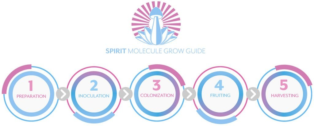 Spirit Molecule Psilocybin Mushroom Cultivation Guide - 5 Steps to Growing Magic Mushrooms