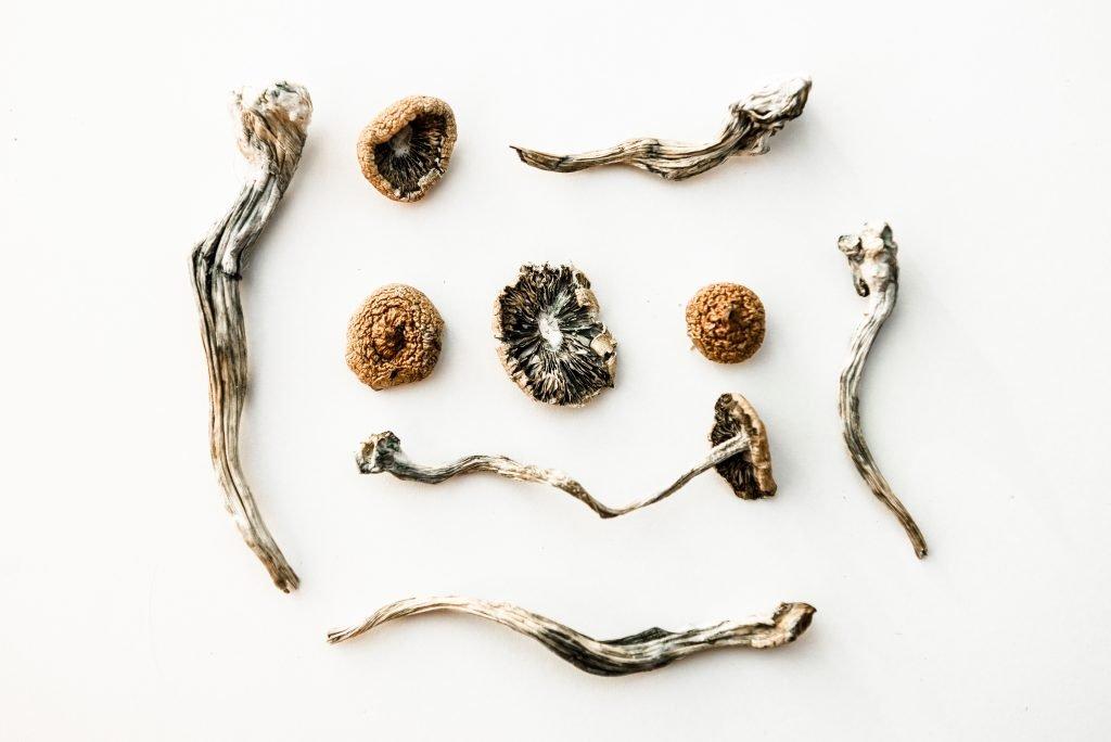 Spirit Molecule - Magic Mushrooms